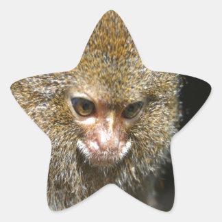 monkey deep thinker  learn from experience star sticker