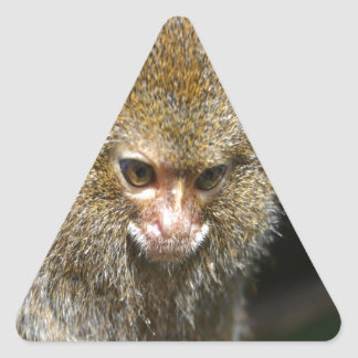 monkey deep thinker  learn from experience triangle sticker