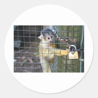 Monkey Do Classic Round Sticker