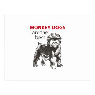 MONKEY DOGS POSTCARD