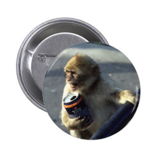 Monkey Drinking Pinback Buttons