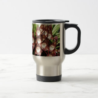 MONKEY FACED FLOWERS .- Miracles of Nature Mug