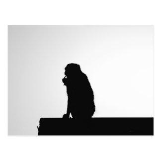 Monkey flossing silhouette photo postcard