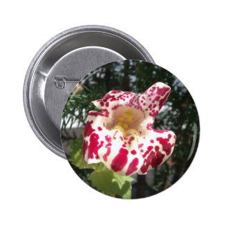 Monkey Flower Maroon Spotted/Light Yellow Pinback Button