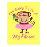 Monkey Future Big Sister Postcard