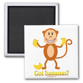 Monkey - Got bananas? magnet