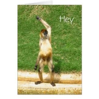 Monkey greeting greeting card