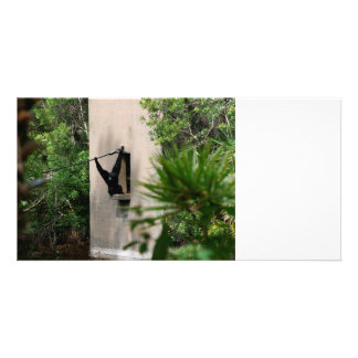 monkey hanging out of concrete house window photo card