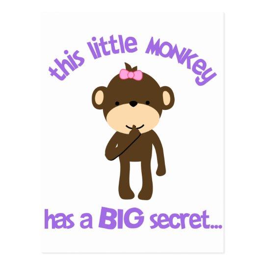 Monkey Has A Secret Big Sister Postcard