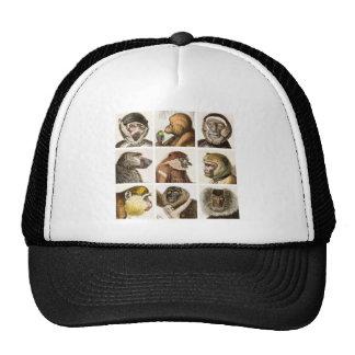 Monkey Head COLLAGE - Mesh Hat