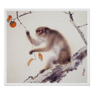 Monkey in a Persimmon Tree Poster