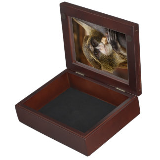 Monkey in a tree keepsake boxes