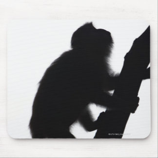Monkey in a tree, Railay peninsula, Mouse Pad