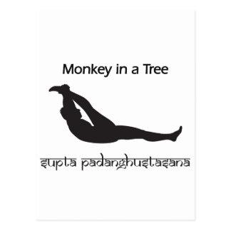 Monkey in a Tree Variation Postcard