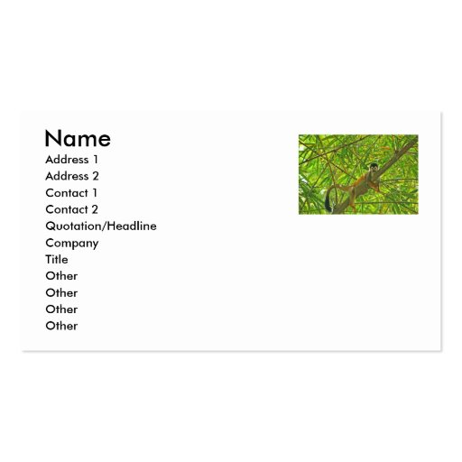 Monkey in Bamboo Jungle Double-Sided Standard Business Cards (Pack Of 100)
