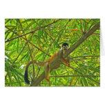 Monkey in Bamboo Jungle Greeting Card