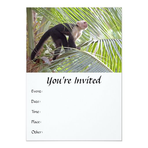 Monkey in Bamboo Jungle Photo 5x7 Paper Invitation Card