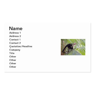 Monkey in Bamboo Jungle Photo Business Card Template