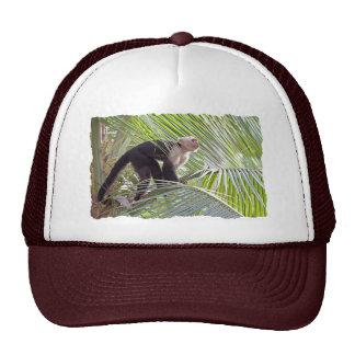 Monkey in Bamboo Jungle Photo Trucker Hats