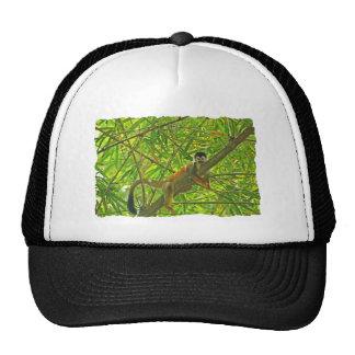 Monkey in Bamboo Jungle Trucker Hats