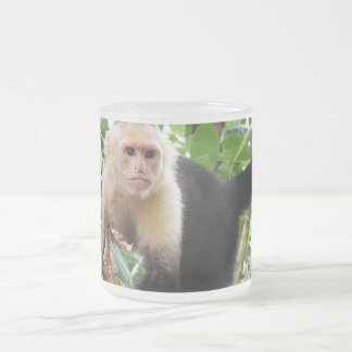 Monkey in Costa Rica 10 Oz Frosted Glass Coffee Mug