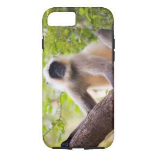Monkey in jungle of Ranthambore National Park iPhone 8/7 Case