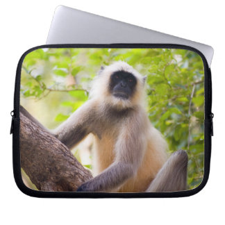 Monkey in jungle of Ranthambore National Park Laptop Sleeve