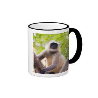 Monkey in jungle of Ranthambore National Park Ringer Mug