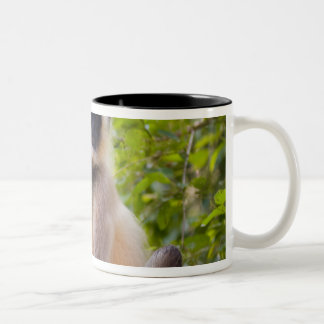 Monkey in jungle of Ranthambore National Park Two-Tone Coffee Mug