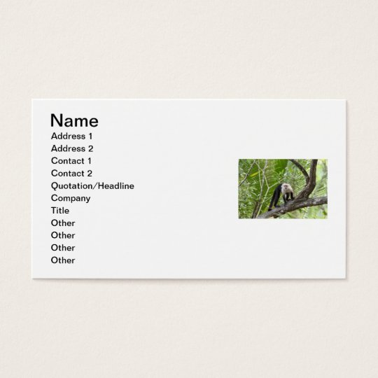 Monkey in the Jungle Business Card