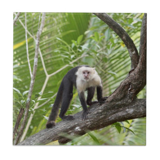 Monkey in the Jungle Ceramic Tile