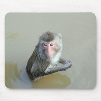 monkey in water,猴子 mouse pad