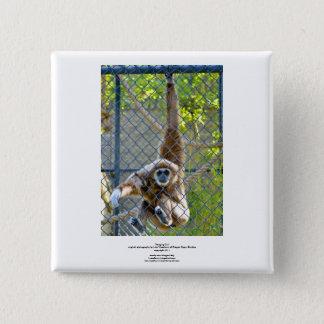 Monkey in zoo habitat button