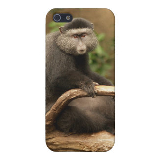 Monkey iPhone 4 Speck iPhone SE/5/5s Cover