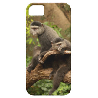 Monkey iPhone 5 Case-Mate Barely There iPhone SE/5/5s Case