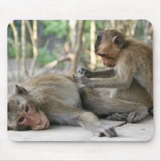 Monkey Island Pals Mouse Pad