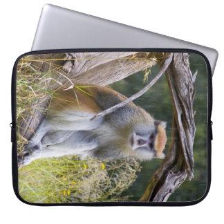 Monkey Laptop Sleeves