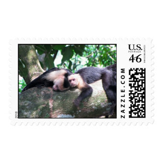 Monkey Love Stamp