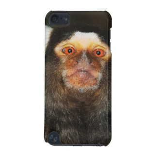 Monkey marmoset ape primate iPod touch (5th generation) cover