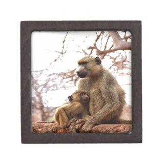 monkey mother love and joy premium jewelry box