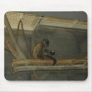 monkey mouse pad