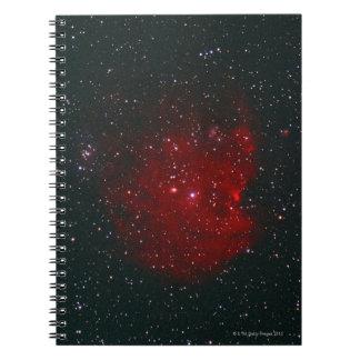 Monkey Nebula Notebook