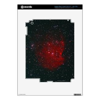 Monkey Nebula Decal For iPad 3
