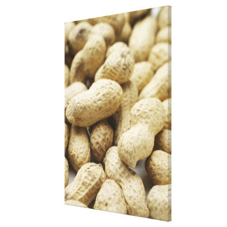 Monkey nuts. canvas print