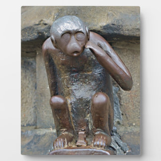 monkey on Grand Place of Mons, Belgium Plaques