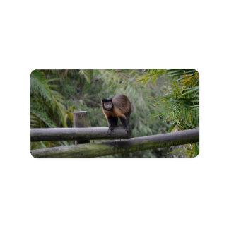 monkey on railing sad primate personalized address labels