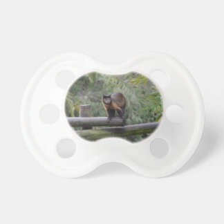 monkey on railing sad primate pacifier