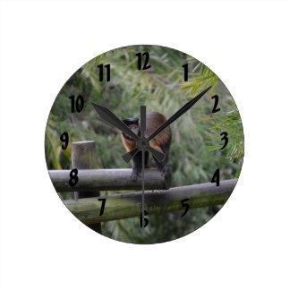 monkey on railing sad primate round clock