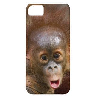 Monkey phone iPhone SE/5/5s case