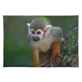 Monkey Placemat